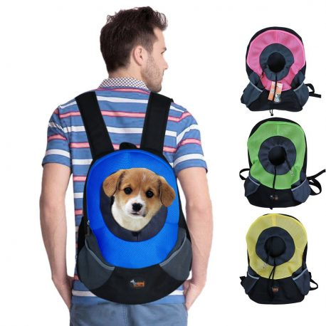 blue dog carrier